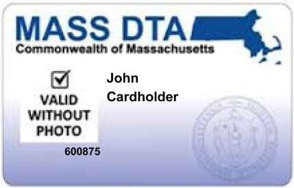 """Valid-without-Photo"" issued to exempt applicants, and recipients who need a replacement card. Started December, 2013."